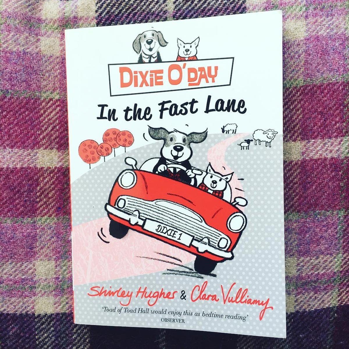 Dixie o Day Childrens Book